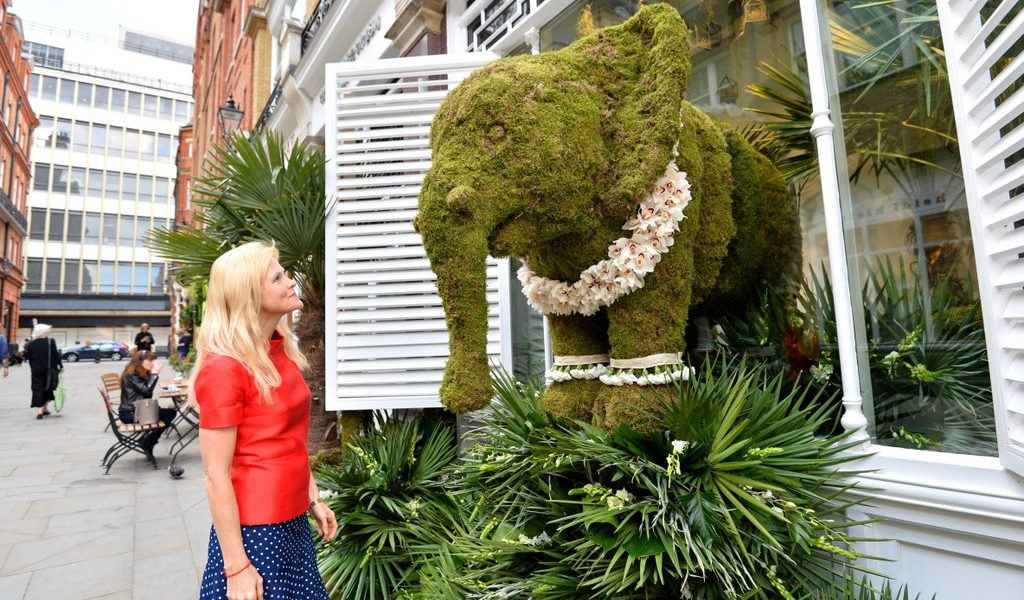 Chelsea in Bloom:  The White Company