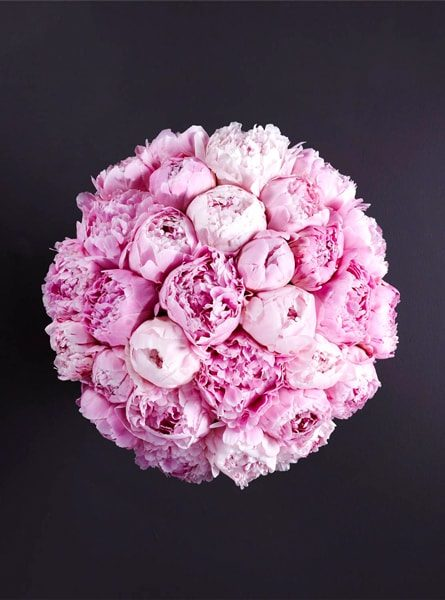 perfect_pink_peonies_bouquet_larry_walshe_luxury_london_delivery